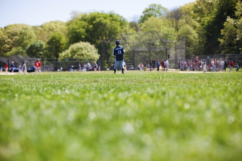 baseballliga little fotografering för bildbyråer