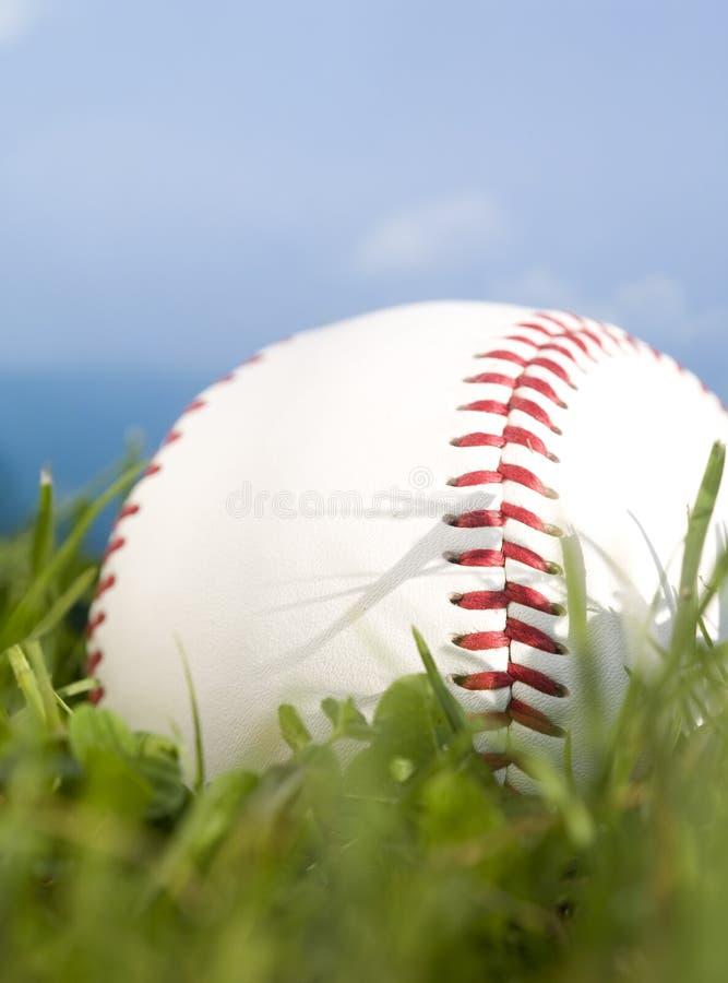 Basebol do verão foto de stock royalty free