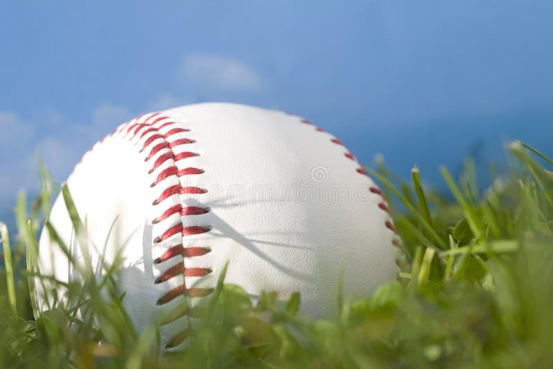 Basebol do verão foto de stock