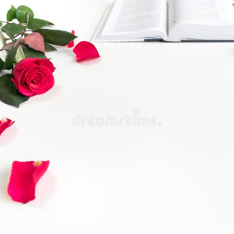 Baselland,瑞士- 30 04 2019? 红色玫瑰、红色瓣和一部圣经在一张白色桌上 干净的白色背景 库存照片