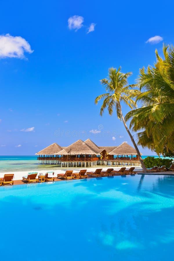 Basen i kawiarnia na Maldives plaży obrazy royalty free
