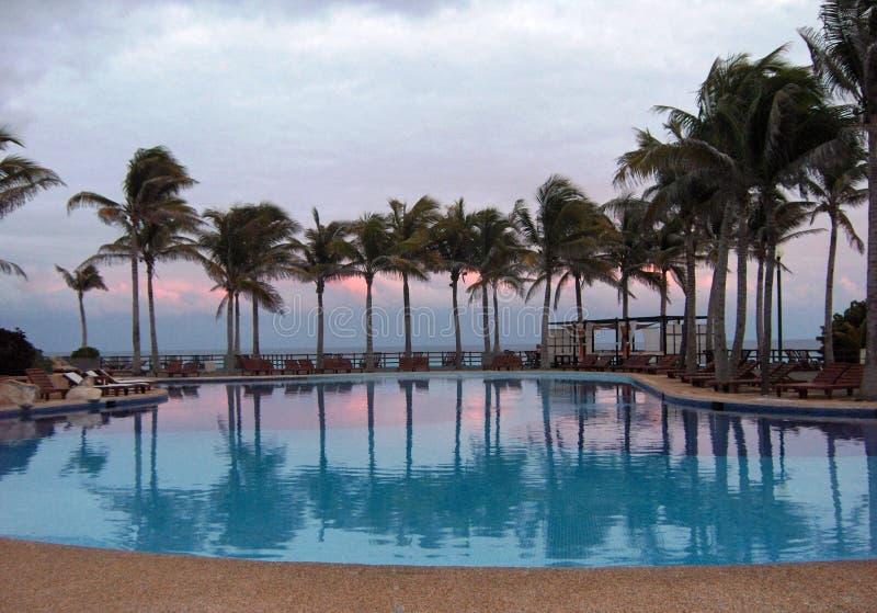 basen tropikalny zdjęcie stock