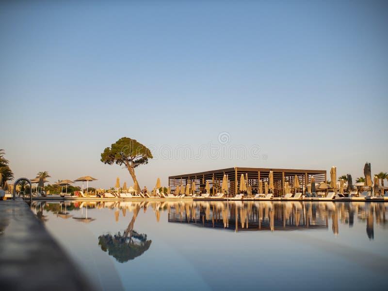 Basen w luksusowym kurorcie lub hotel z widokiem kokosowy drzewo i plaża pod niebieskim niebem zdjęcia stock
