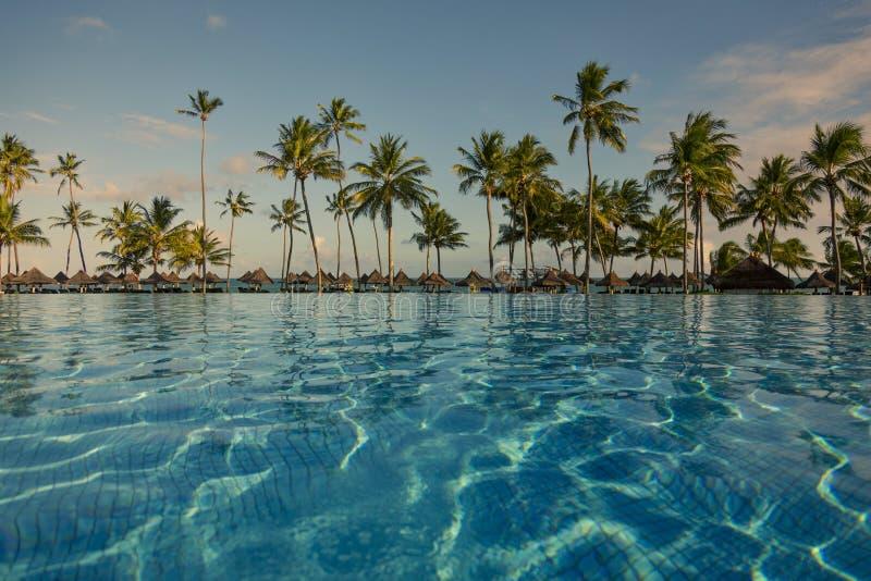 Basen z drzewkami palmowymi blisko oceanu podczas pięknego zmierzchu zdjęcie stock
