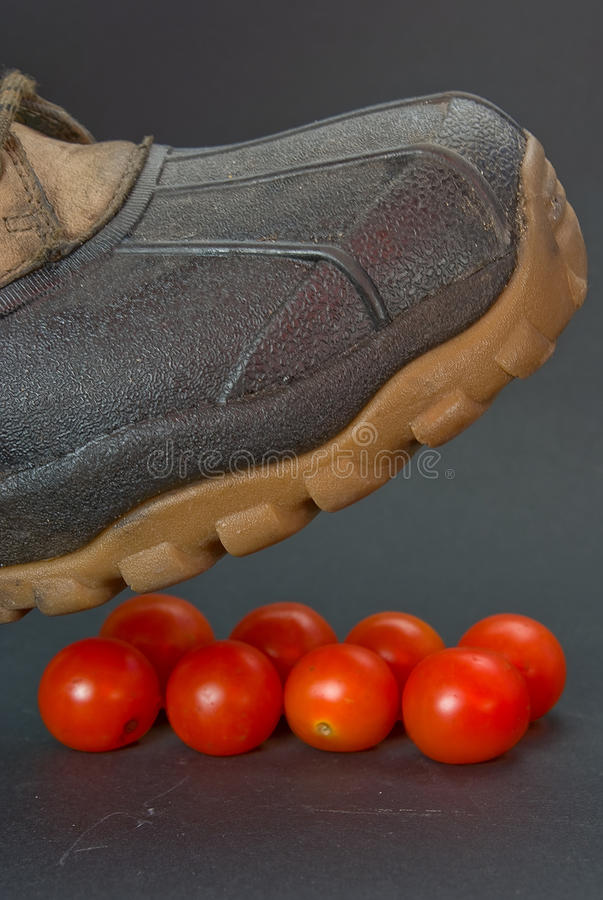 Baseness. The person is going to crush a boot small tomatoes stock photo