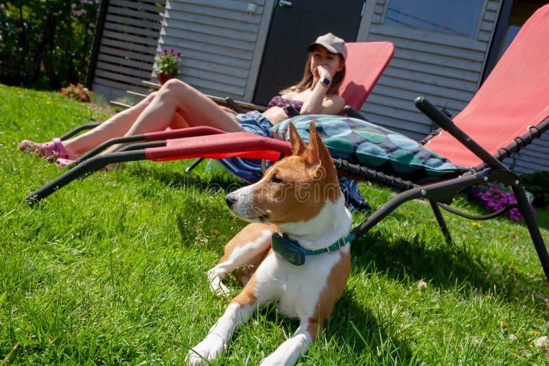 Basenji młoda kobieta i pies odpoczywamy w ogródzie pogodna pogoda fotografia royalty free