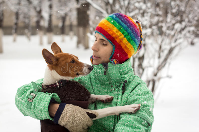 Basenji in the snow. stock photography