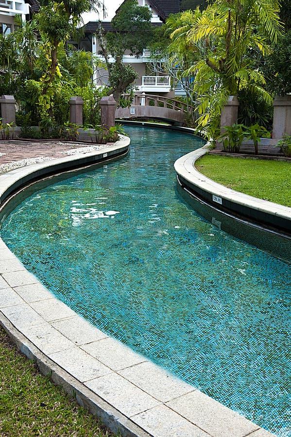 basenu dopłynięcie obrazy royalty free