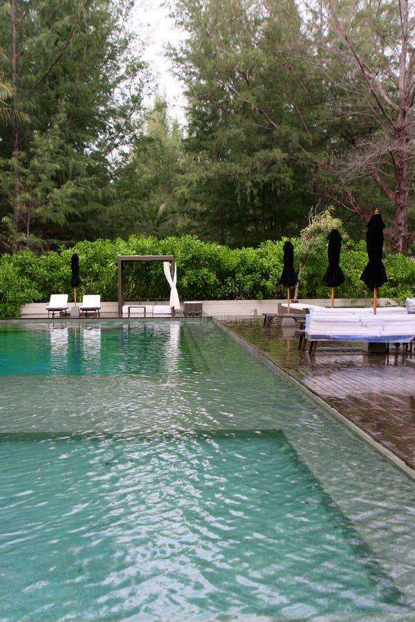 basenu dopłynięcie obraz royalty free