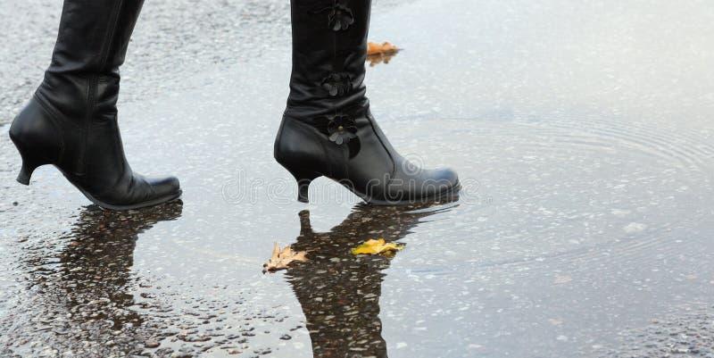 basenu kroczenia wody kobieta zdjęcie stock