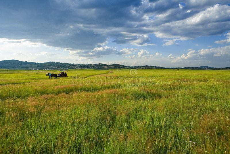 Bashang Landschaft lizenzfreie stockfotografie