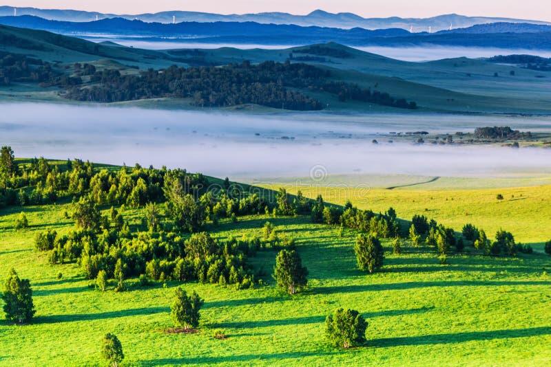 Bashang obszar trawiasty w lecie zdjęcie stock