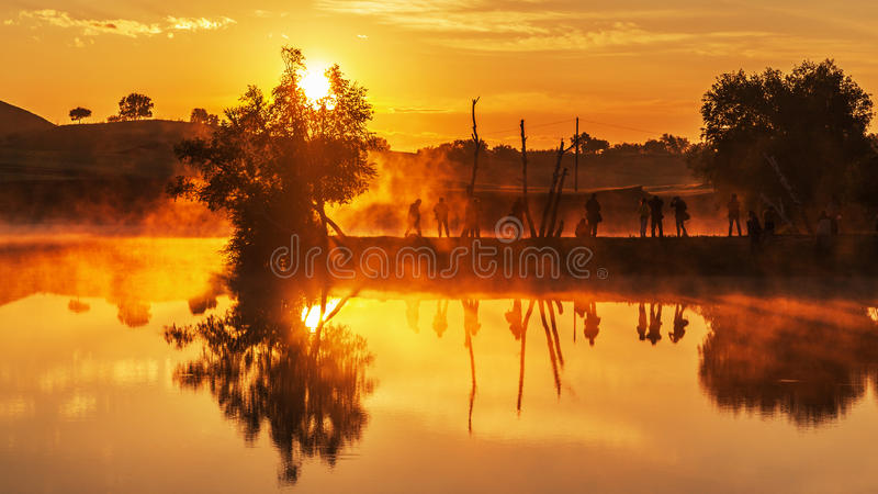 Bashang-Wiese im Sommer stockfoto