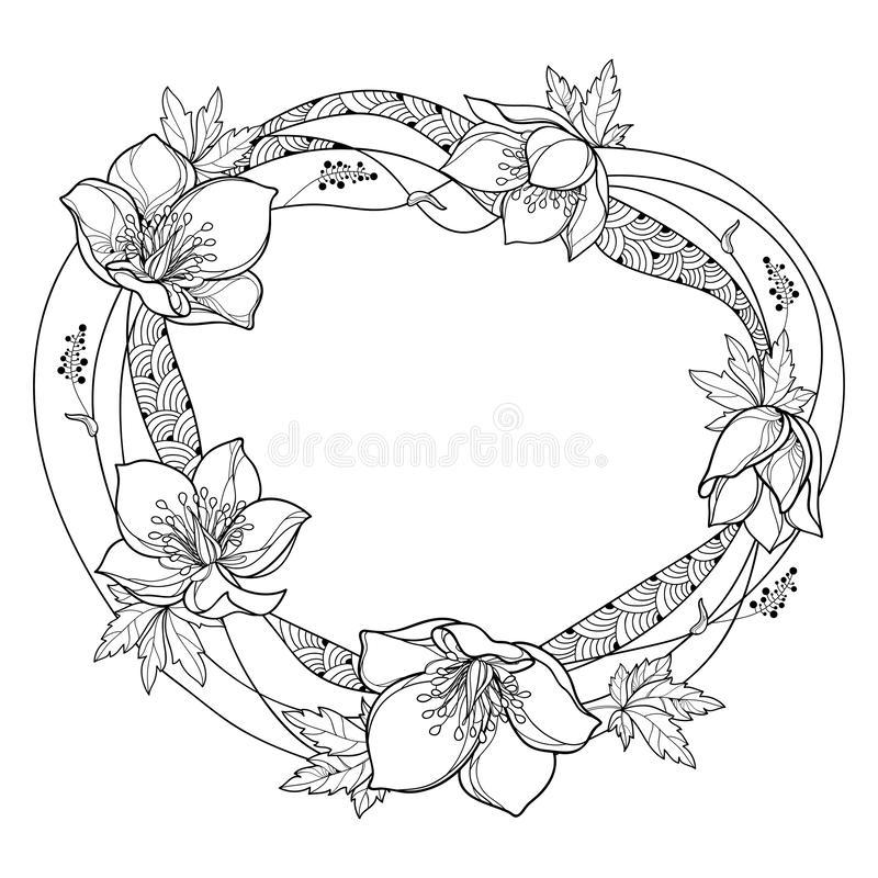 Vector round frame with outline Hellebore or Helleborus or Winter rose, bud and leaf in black isolated on white background. stock illustration
