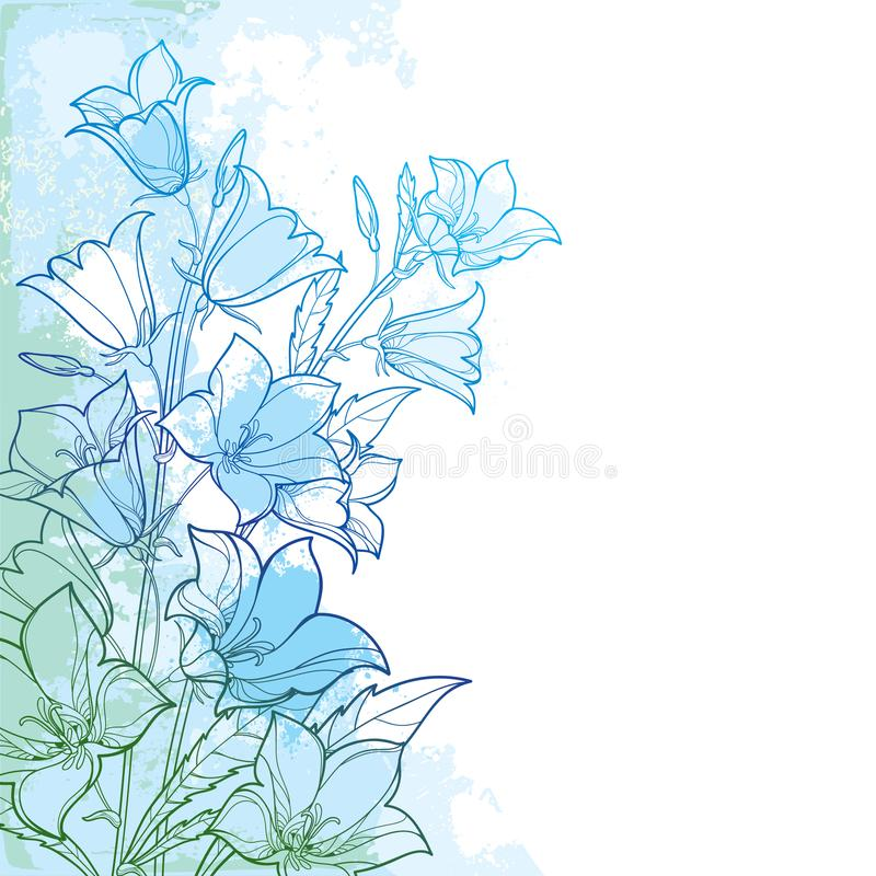 Vector corner bouquet with outline Campanula or Bellflower or Bluebell flower, leaf and bud in pastel blue on the textured back. Vector corner bouquet with vector illustration
