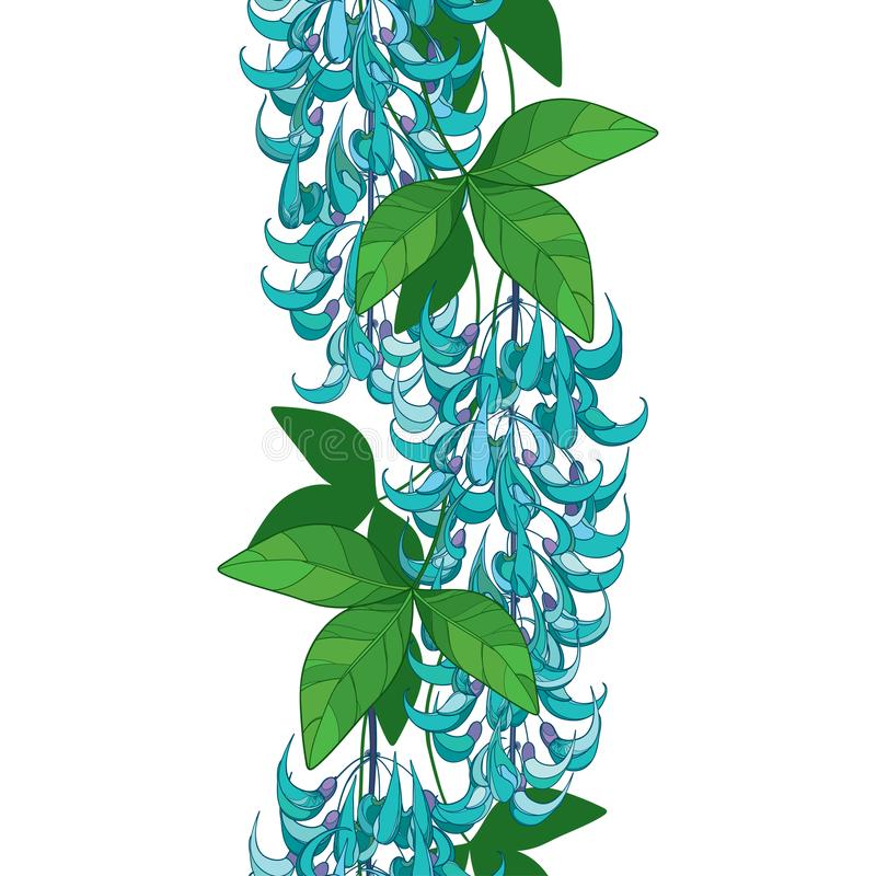 Tropical Vine Stock Illustrations 2 782 Tropical Vine Stock