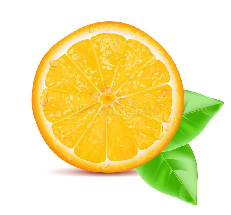 Orange slice with leaf isolated on white background. Vector illustration. Orange slice with leaf isolated on white background. Vector illustration royalty free illustration