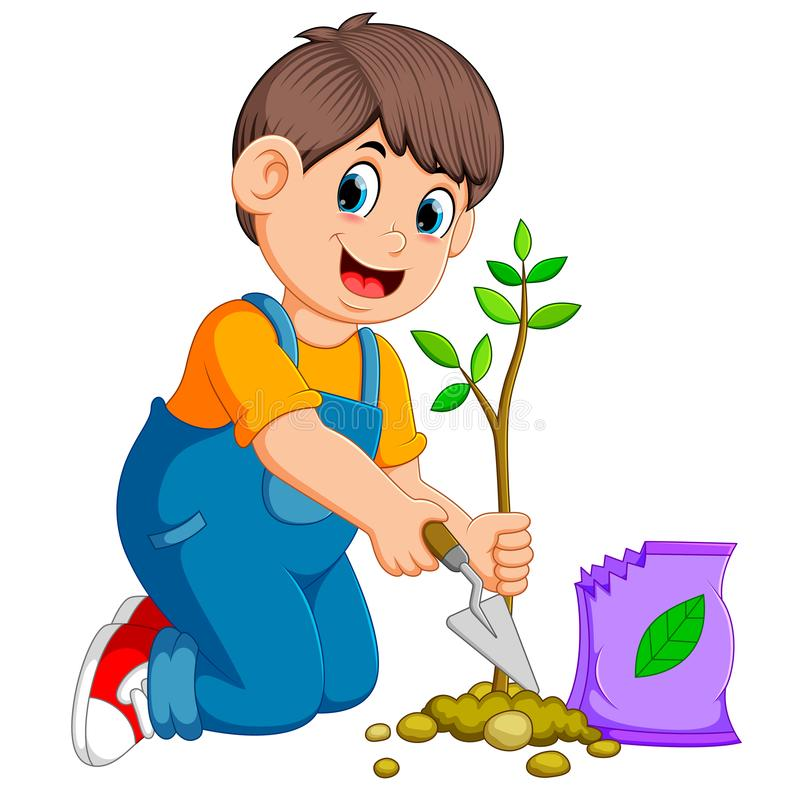 A boy planting a green young plant with fertilizer royalty free illustration