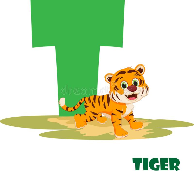 Cute Animal Zoo Alphabet. Letter T for tiger royalty free stock photo