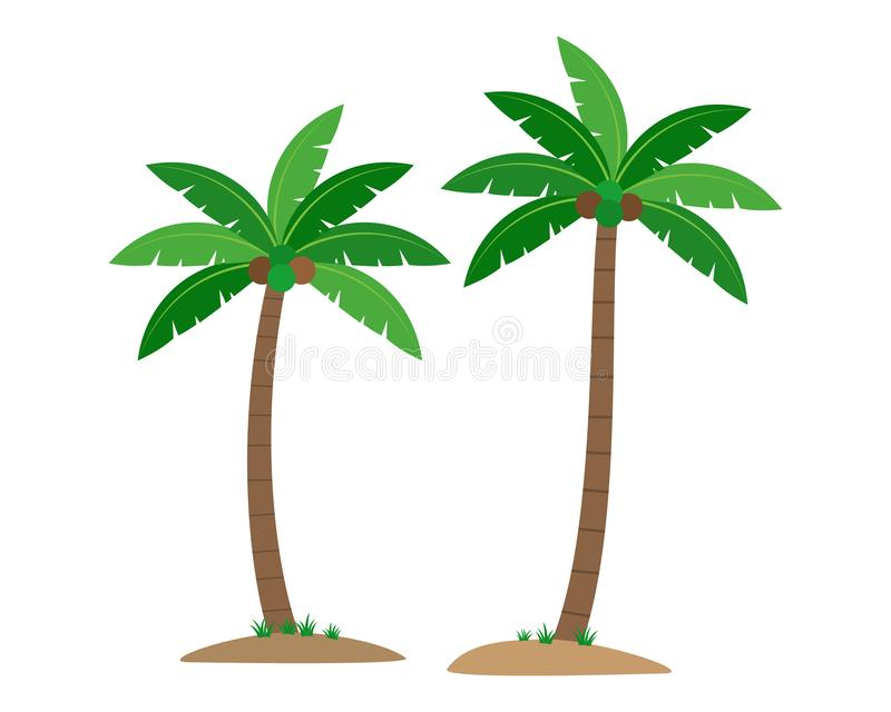 Coconut palm trees isolated on white background. Vector illustration vector illustration