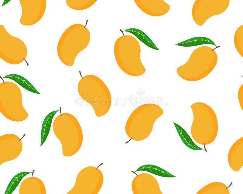 Seamless pattern of ripe mango isolated white background. Vector illustration royalty free illustration