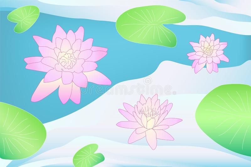 Colorful vector lotus on the water with leaves vector illustration