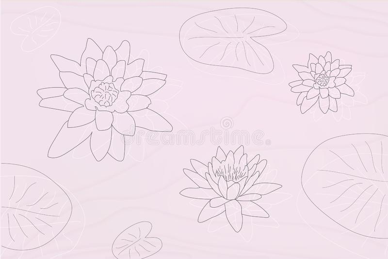 Lotus flowers silhouettes with leaves in grayscale maner vector illustration