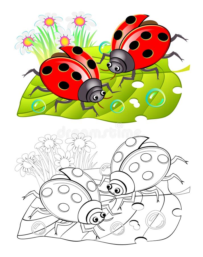 Two cute ladybirds sitting on a leaf. Colorful and black and white page for coloring book for kids. royalty free illustration