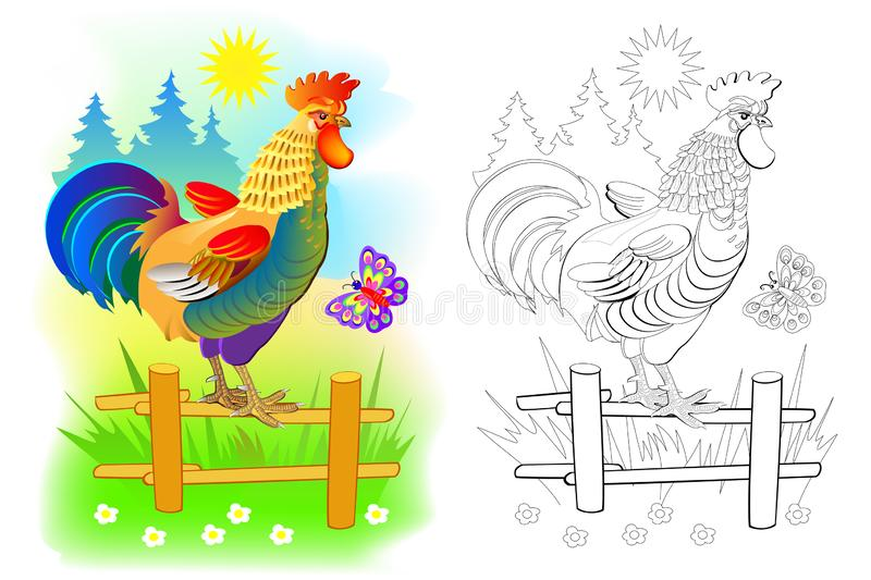 Illustration of cute rooster at sunrise. Colorful and black and white page for coloring book for kids. Domestic farm animal cock. royalty free illustration