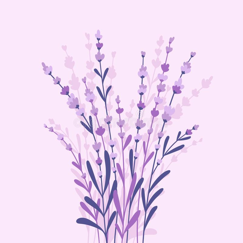 Beautiful and elegant lavender buds on the purple background. Vector card design with flowers in hand-drawn style royalty free illustration
