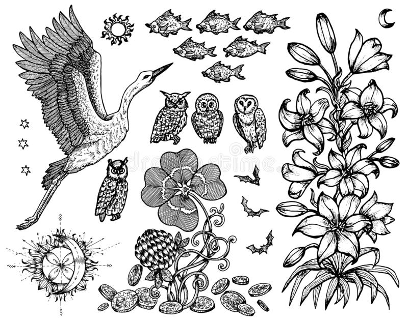 Design set with stork, lily, fish and nature symbols isolated on white. stock illustration