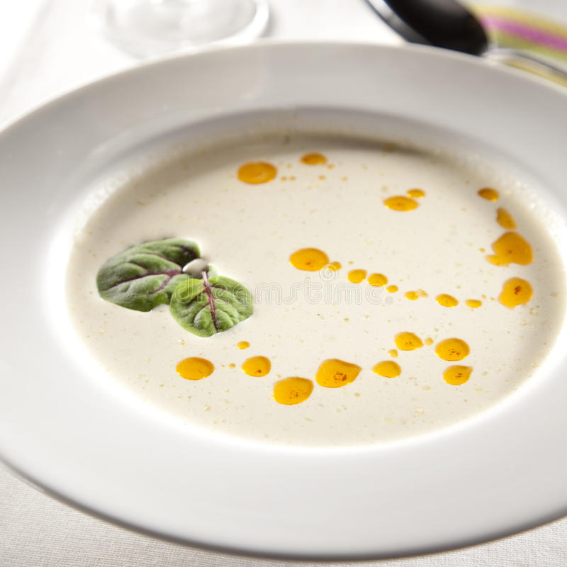 Basic soup. Basic mushroom soup with oily drop on the surface stock photography