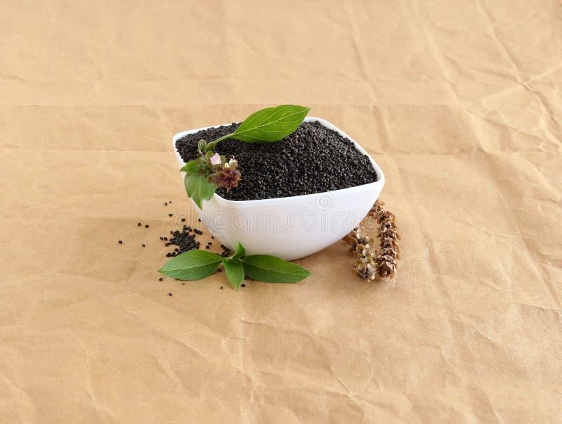 Basilów ziarna w pucharze, liście i Suchy Pistil zdjęcie stock