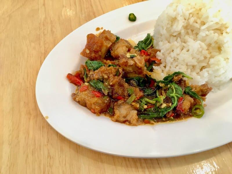 Basil Crispy griskött med ris royaltyfria foton