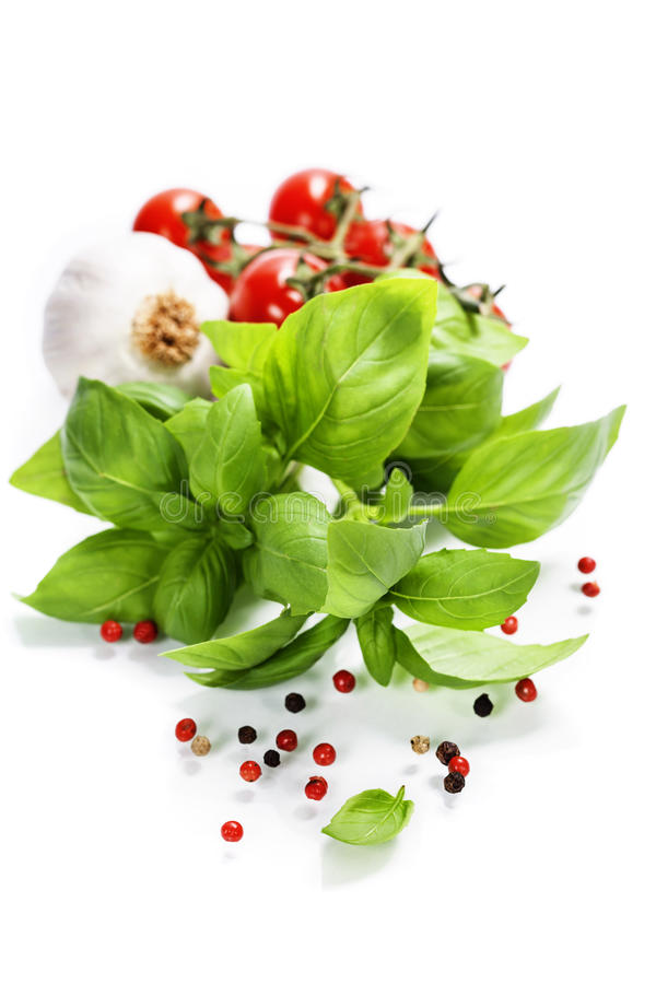 Basil and fresh vegetables royalty free stock photos