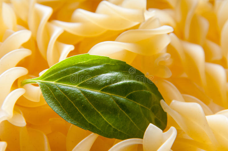 Basil leaf and pasta. Fusilli pasta and basil leaf in macro mode royalty free stock photography