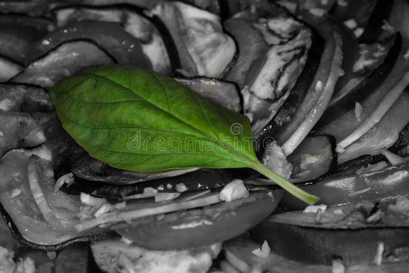 Basil Leaf verde em vegetais preto e branco imagem de stock royalty free