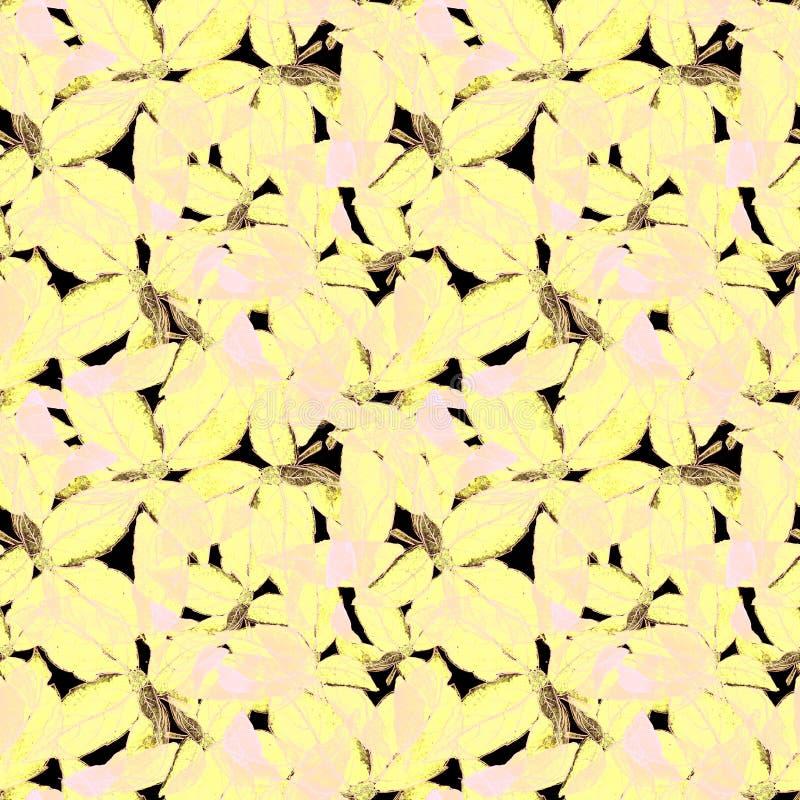 Basil Leafs Seamless Pattern Fond tiré par la main de Repeatably avec l'herbe et le Basil d'épice photographie stock