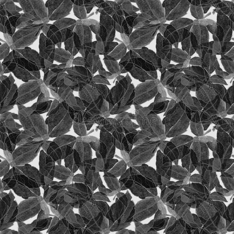 Basil Leafs Seamless Pattern Fondo disegnato a mano di Repeatably con l'erba ed il basilico della spezia immagini stock