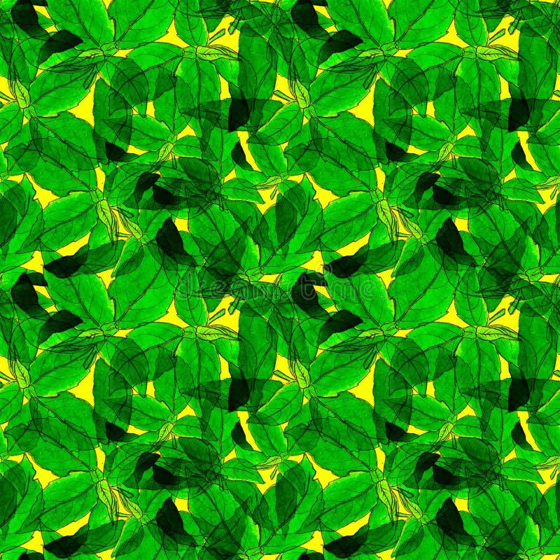 Basil Leafs Seamless Pattern Fondo disegnato a mano di Repeatably con l'erba ed il basilico della spezia immagine stock libera da diritti