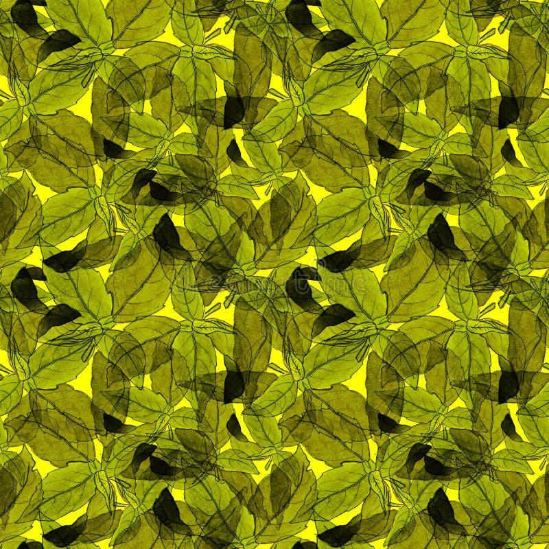 Basil Leafs Seamless Pattern Fondo disegnato a mano di Repeatably con l'erba ed il basilico della spezia fotografie stock libere da diritti