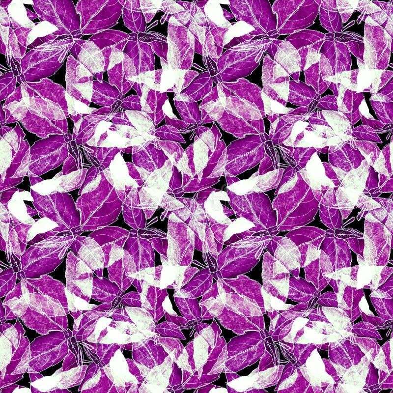 Basil Leafs Seamless Pattern Fondo disegnato a mano di Repeatably con l'erba ed il basilico della spezia immagine stock