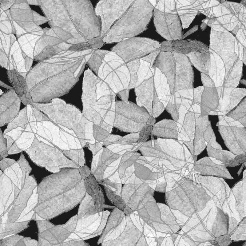 Basil Leafs Seamless Pattern Gezeichneter Hintergrund Repeatably Hand mit Gewürz-Kraut und Basilikum lizenzfreies stockfoto