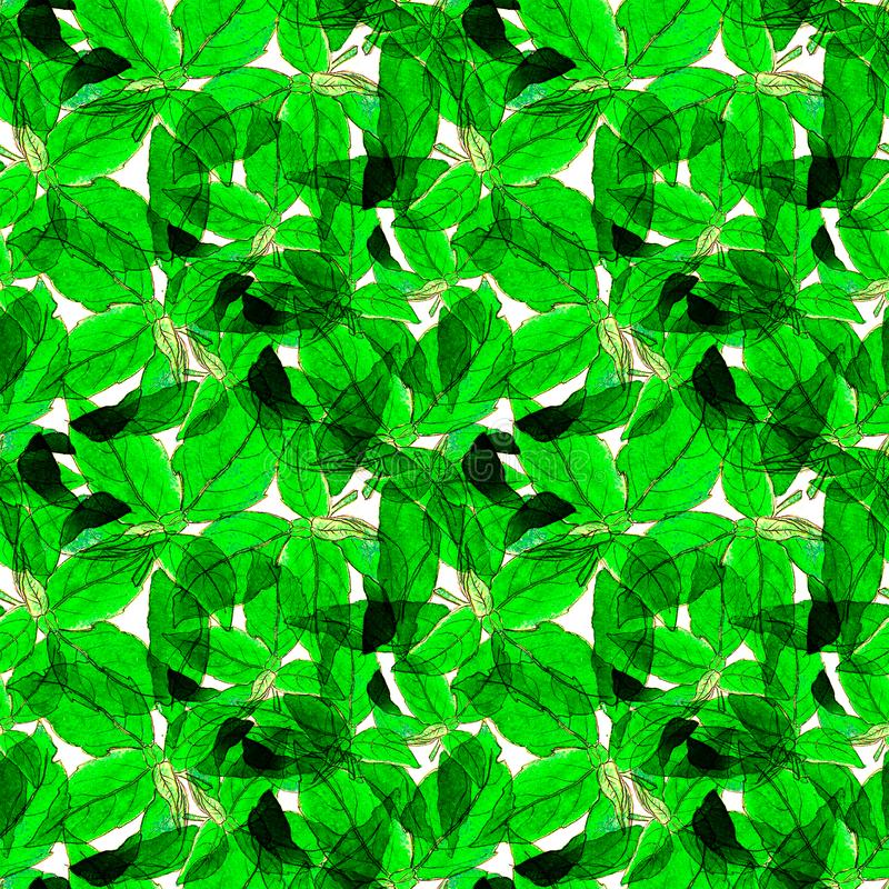 Basil Leafs Seamless Pattern. Repeatably Hand Drawn Background with Spice Herb and Basil. royalty free stock photography