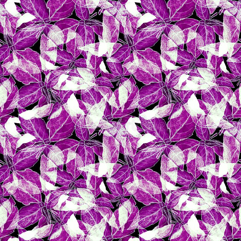 Basil Leafs Seamless Pattern. Repeatably Hand Drawn Background with Spice Herb and Basil. stock image