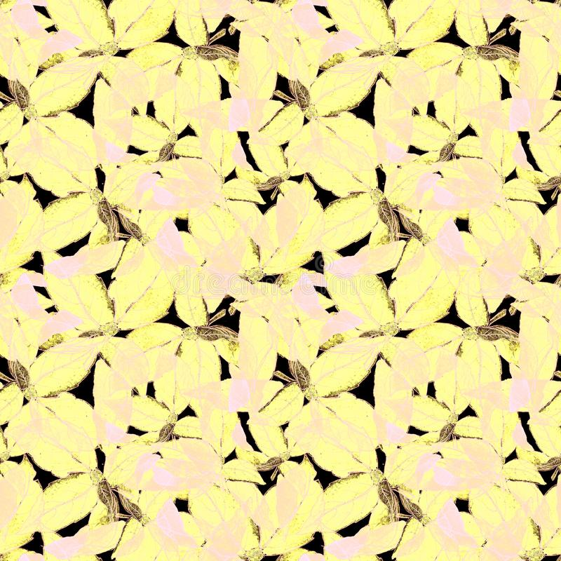 Basil Leafs Seamless Pattern. Repeatably Hand Drawn Background with Spice Herb and Basil. stock photography