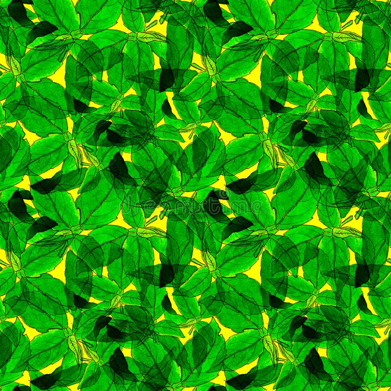 Basil Leafs Seamless Pattern. Repeatably Hand Drawn Background with Spice Herb and Basil. royalty free stock image