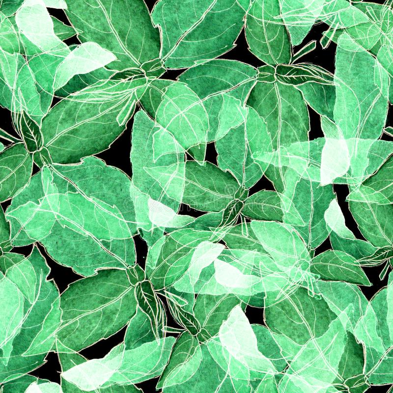 Basil Leafs Seamless Pattern. Repeatably Hand Drawn Background with Spice Herb and Basil. royalty free stock photo