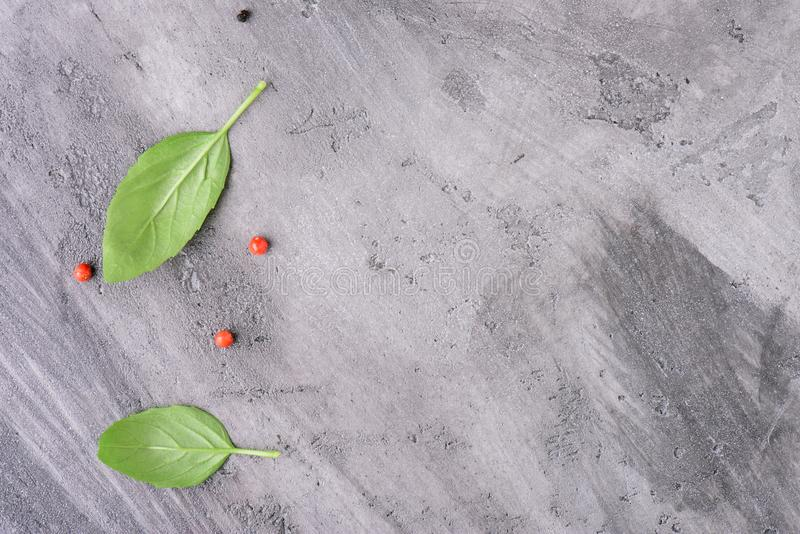 Basil leaves with pepper on a concrete surface royalty free stock photos