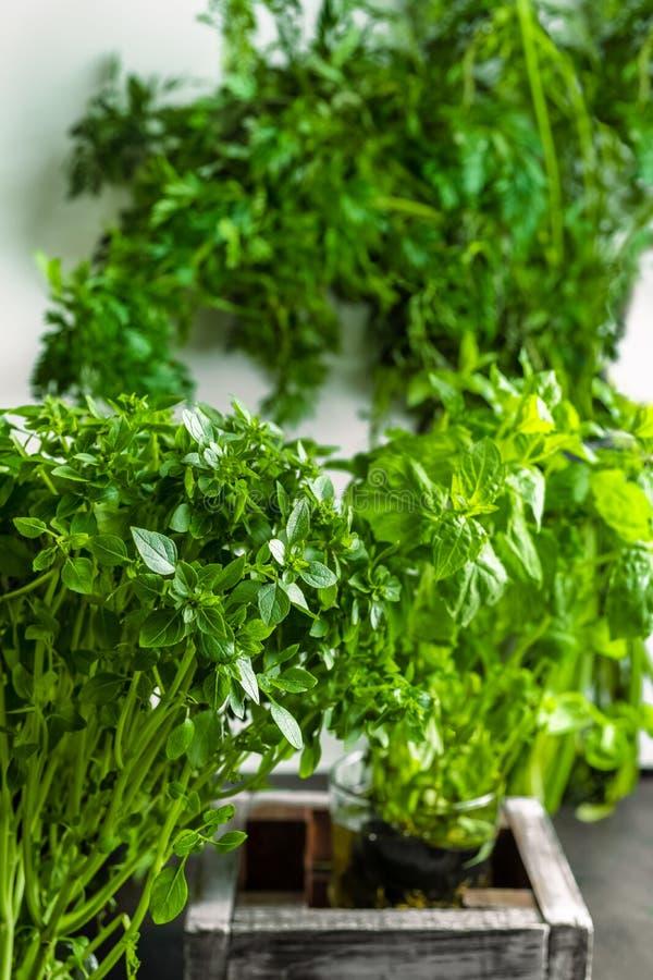 Herb Pots In Garden Stock Image Image Of Garden Cuisine 99877719